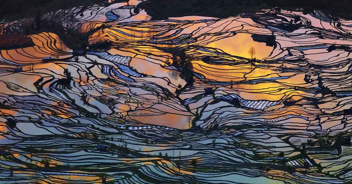 The Spectacular Rice Terraces of Yuanyang
