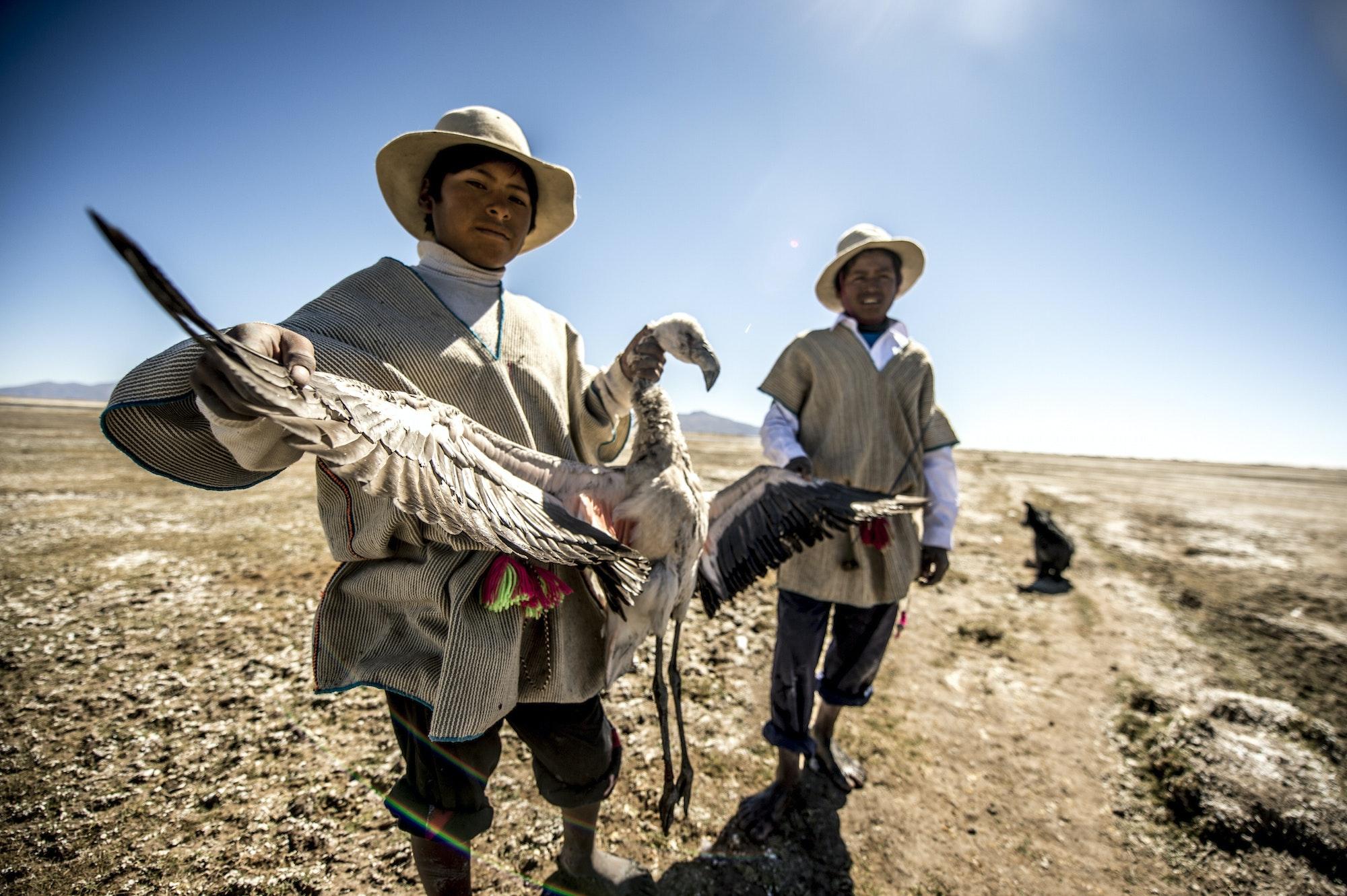 Bolivia's Chipaya and the Altiplano